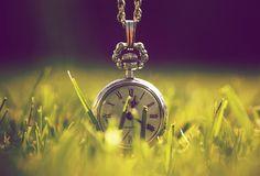 свет, макро, природа, зелень, Часы, время, трава