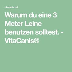 Warum du eine 3 Meter Leine benutzen solltest. - VitaCanis®