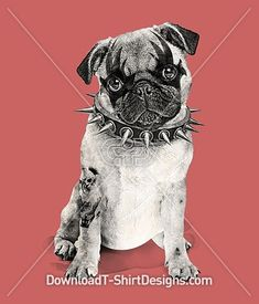 Punk Pug Puppy Dog Studded Collar Tattoo. Download this design and print on your T-Shirts or products today at: https://downloadt-shirtdesigns.com/downloadt-shirtdesigns-com-2123263.html