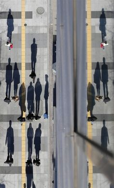 Long shadows on a winter's day in Tokyo, Japan