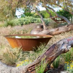 RUSTED POND