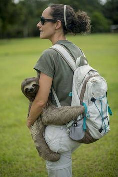 Just taking my sloth for a walk, no biggy!