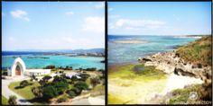Mamlo Okinawa Trip 1