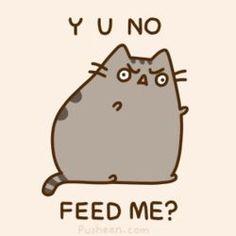 someone needs to feed pusheen soon!!!