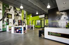 Greenville Humane Society by McMillan Pazdan Smith Architecture - Interior of adoption and pet center
