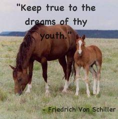 Horse inspiration