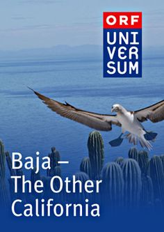 Baja-The Other California Documentary movie - Watch free #documentaries on Viewster.com