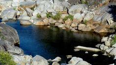 #Take10MinutesADayTo embrace nature @HarmonyRidgeNC #camping #ForestFriday