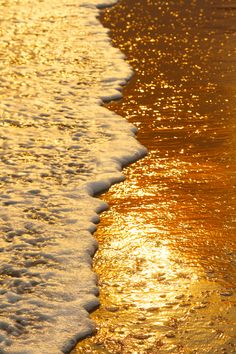 Golden hour at the beach. Gold Aesthetic, Aesthetic Colors, Aesthetic Pictures, Aesthetic Food, Aesthetic Vintage, Beach Foto, Breathing Fire, Creation Art, Shades Of Gold