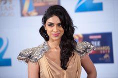 Zee Cine Awards 2012 #jewelry #fashion #india #style #bollywood #designer #redcarpet