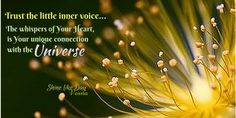 ...Trust the little #inner voice; The whispers of YOᘮર  #Heart, is Your unique connection with the #Universe ✳✨´#quotes