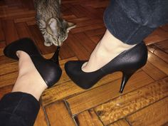 i was trying to take a cute shoe pic but then my cate came and this happened