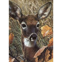 Diamond Painting - Full Round - Forest Deer – Everydayedeals Diamond Drawing, 5d Diamond Painting, Cross Paintings, Animal Paintings, Embroidery Kits, Cross Stitch Embroidery, Mosaic Crafts, Drawing Tools, Craft Kits