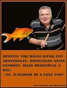 Haha, Jokes, Fish, Khal Drogo, Funny, Movie Posters, Comic, Chistes, Funny Jokes