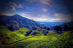 Cameron Highlands Pegunungan Terindah Malaysia