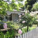 love the white picket fence