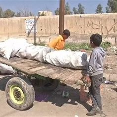 Mosul children dream of going to schoolThese poor children  #news #alternativenews