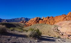 Looking for info about the Red Rock Canyon National Conservation Area, Las Vegas? Read my blog post for tips, photos and recommendations on what to see and do.