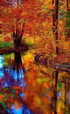 Beautiful autumn ...