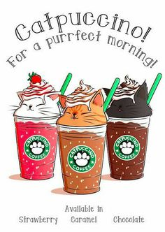 Kawaii Starbucks Catpuccino Art in Japan ~. Cute Animal Drawings, Kawaii Drawings, Drawings Of Cats, Cute Food Drawings, Cute Cat Drawing, Drawing Animals, Pencil Drawings, Crazy Cat Lady, Crazy Cats