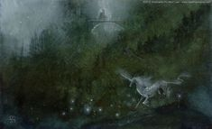 Stephanie Pui-Mun Law - Shadowscapes. I'm not a unicorn person, but I love this.