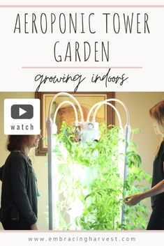 Indoor growing can be fast, easy, and fun next a Indoor Hydroponic Gardenings setup. ... In time-honored gardening, the soil stores nutrients that the plants can ... * Visit image for more details.