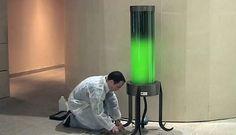Lámparas con algas que absorben CO2