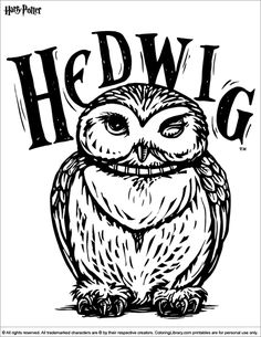 A fun Harry Potter printable coloring page for kids who love to get creative. Harry Potter printable coloring page. Find and print your favorite cartoon coloring pages and sheets in the Coloring Library free! Harry Potter Thema, Harry Potter Owl, Harry Potter Drawings, Harry Potter Pictures, Cartoon Coloring Pages, Printable Coloring Pages, Coloring Books, Coloring Sheets, Harry Potter Coloring Pages
