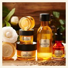 Body Shop At Home, The Body Shop, Body Shop Skincare, Oil For Dry Skin, Rosehip Seed Oil, Oil Shop, Beauty Kit, Love Your Skin, Healthy Aging