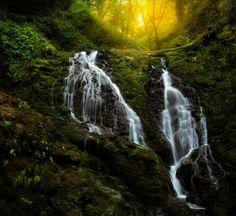 Cataract Falls Trail |  Sapna Reddy Photography