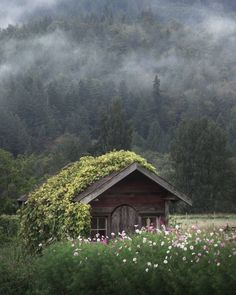 Cozy little cabin in Skagit Valley, WA - Cozy Places, Cozy Interior Design Concepts and Decor Ideas Beautiful Homes, Beautiful Places, Amazing Places, Wonderful Places, Beautiful Flowers, Amazing Photos, Cabin In The Woods, Cottage In The Woods, Cabins And Cottages