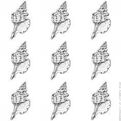 Seashells 7 Conch Shell- Pen Illustration