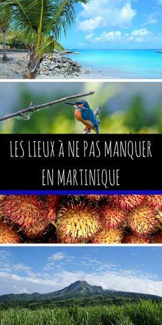 Envie d'évasion ? Envie de soleil ? Que voir en Martinique ? Un circuit peut valoir le coup ! Nous vous donnons plein de conseils pour visiter cette belle île ! #Martinique #Voyage #évasion