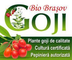 Tratamente bio pentru cultura de roșii: Stropiri fără chimicale contra manei sau a putregaiului cenușiu Bios, Calendar, Vegetables, Plant, Veggies, Vegetable Recipes, Life Planner