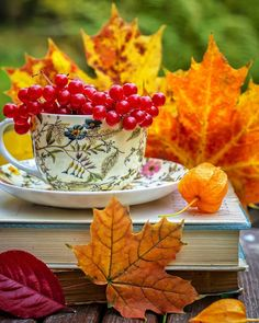 Coeur Gif, Good Day Quotes, Good Morning Flowers, Good Morning Greetings, World Of Color, Still Life, Fall Decor, Tea Cups, Berries
