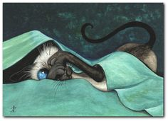 Siamese Cat Baby Blues Silly Kitty Cute Feline ArT -  Limited Edition ACEO Print by AmyLyn Bihrle via Etsy