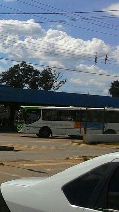 Ônibus Goiânia