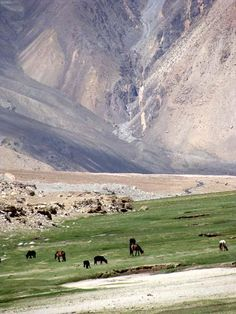 Ladakh Himalayas.