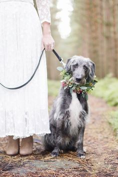 Wild Woodland! Cool snap with the puppy | floral crowns | | floral crowns wedding | | rustic wedding | | wedding | #floralcrowns http://www.roughluxejewelry.com/