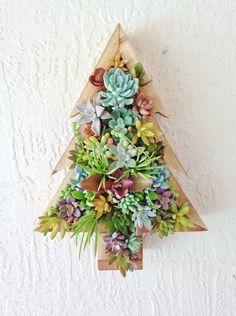 Succulentes de Noel sapin mural