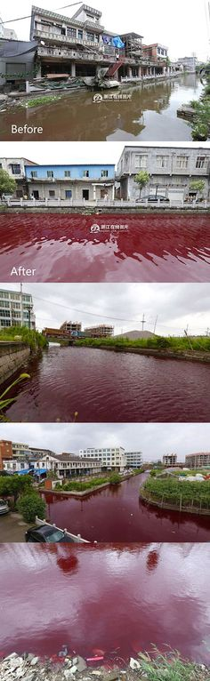 "On Thursday morning, a river in eastern China suddenly turned a bloody shade of red, according to unverified reports by ABC News, China News, Shanghaist, and others.  ""Local residents say the river was running normally at 4am, but it started to redden at around 6am, and in no time turned as crimson as blood,"" China Radio International reported. Angel Clouds, Sky And Clouds, Blood Red Moon, Angels Blood, News China, Red Water, End Times Signs, Nature Water, Thursday Morning"