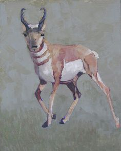 "Wildlife Art International: ""High Plains Speedster"" Original Wildlife , Pronghorn Oil Painting By Colorado Artist Susan Fowler Spring Painting, Wildlife Art, Artist Painting, Pet Portraits, Contemporary Artists, Original Artwork, Moose Art, Abstract Art, Fine Art"