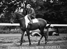 War Admiral 1934-59 -The son of Man o' War inherited his father's fiery temperament and talent he is linked to the year older Seabiscuit, who was a famous Grandson of Man o' War. War Admiral and Seabiscuit competed only once November 1,1938, in the Pimlico Special. Seabiscuit won by four lengths and broke the track record. War Admiral won 21 of 26 starts. In 1937 he won the Triple Crown. He is ranked #13 of the top 100 U.S.Thoroughbred Champions of the 20th Century with Seabiscuit as #25.