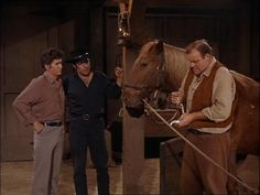 Ben, Adam, and Little Joe strive to help Hoss regain his memory by exposing him to familiar surroundings and faces, but they become discouraged when nothing seems to reverse him back to his old self. From A Stranger Passed This Way (Bonanza)