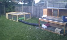 rabbit hutch with tube to extra run; Explore the tube, dude!