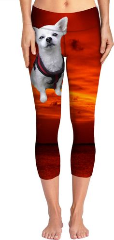 Check out my new product https://www.rageon.com/products/dog-chihuahua-yoga-pants?aff=BWeX on RageOn!