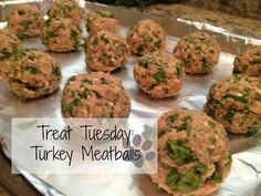 Treat Tuesday: Turkey (or Lamb) Meatballs (I'm going to use lamb since poultry makes my girl gas us outta the room!), perfect for the always itchy dog! It contains ingredients aimed to stop the itching! Puppies And Kitties, Dogs, Itchy Dog, Dog Cafe, Homemade Dog Treats, Doggie Treats, Puppy Food, Turkey Meatballs, So Little Time