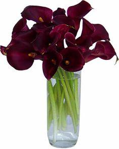 Burgundy calla lilies: all year  $$