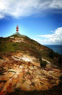 Moreton Island Lighthouse Brisbane Beach, Brisbane City, Queensland Australia, Australia Travel, Brisbane Queensland, Saint Helena Island, Sand Island, Australian Plants, Great Barrier Reef