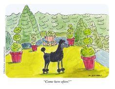 #garden comic relief! ✿✿✿